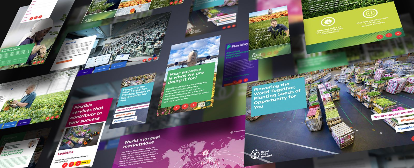 Royal FloraHolland interactive sales brochure